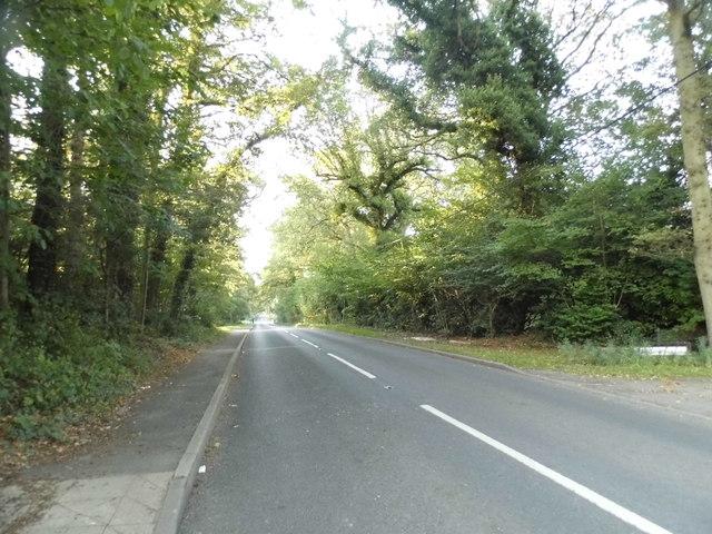 Barhatch Road leaving Cranleigh