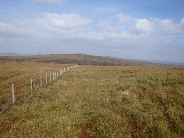 Near Burnhope Head