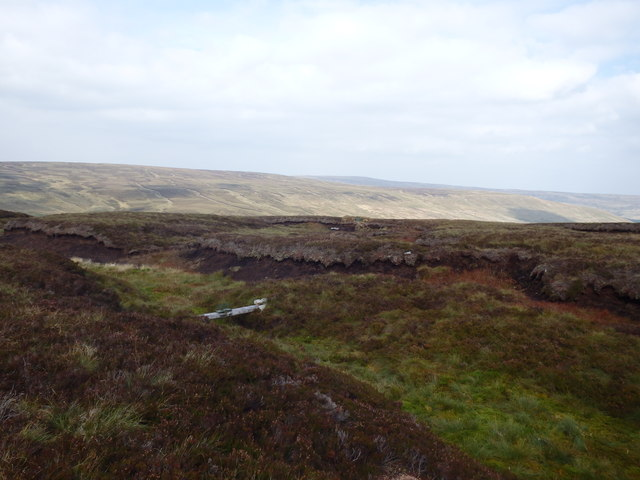 Fenn Trap near Lamb's Head