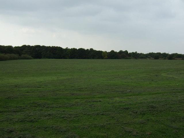 Holland Moor