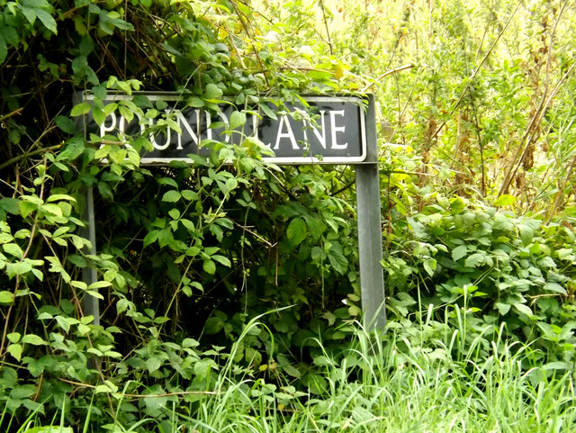 Pound Lane sign