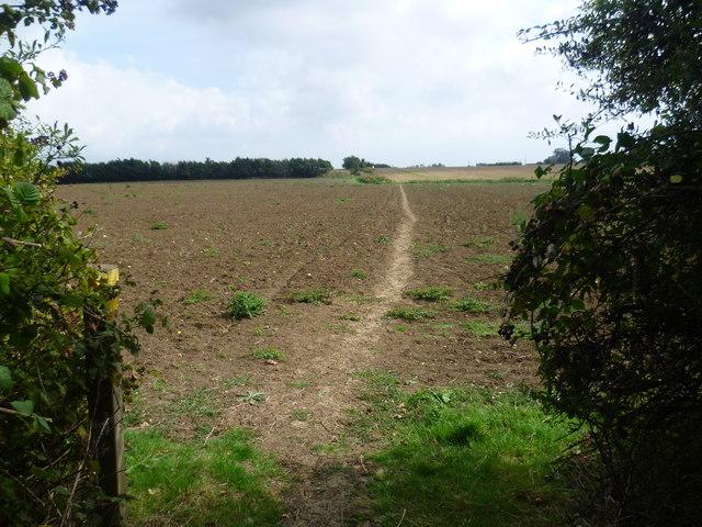 The Saxon Shore Way near High Halstow