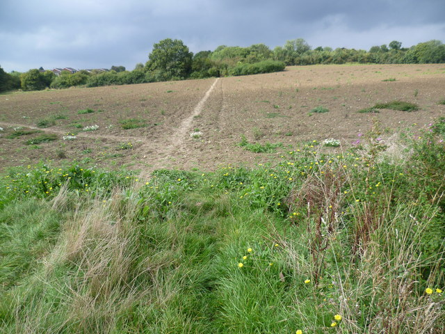 The Saxon Shore Way near High Halstow