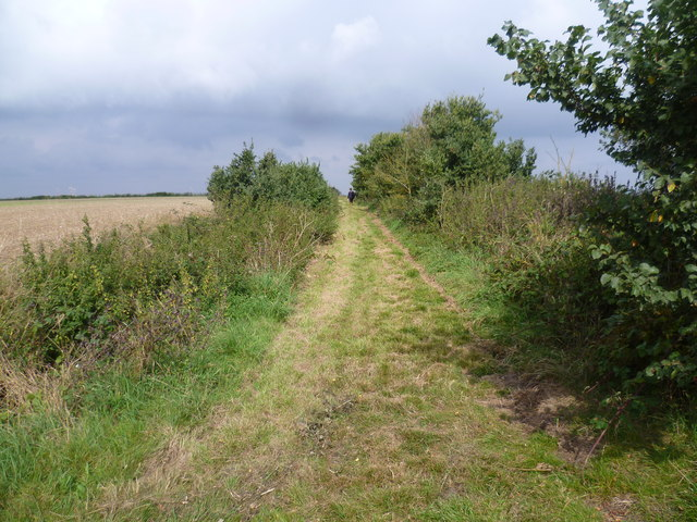 Path to Decoy Farm