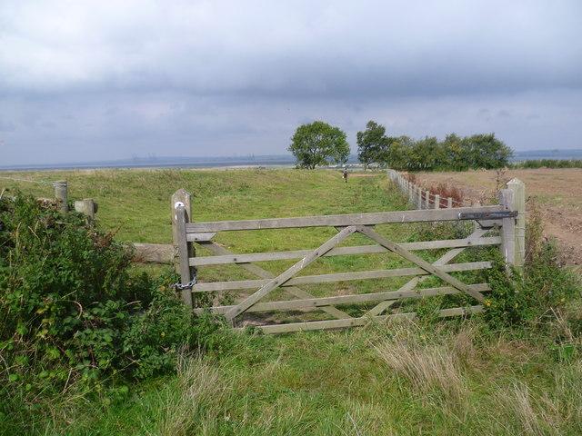 Path to Decoy Farm