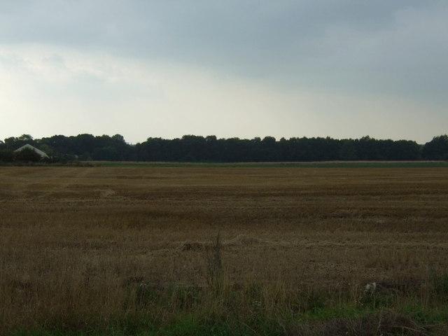 Stubble field near Rainford