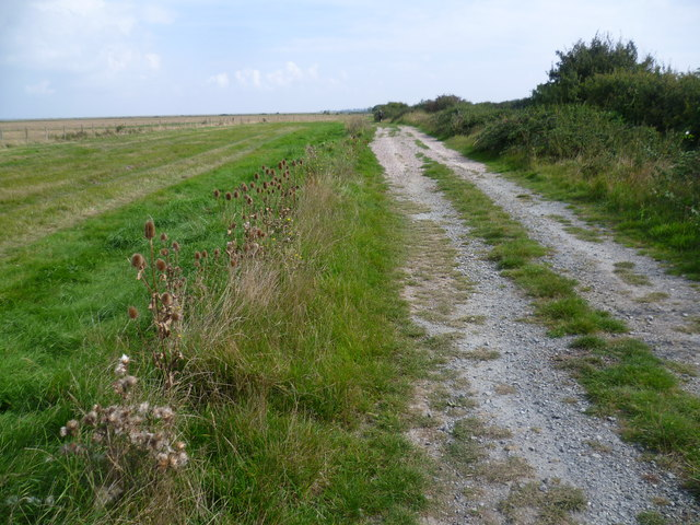 Track on the edge of St Mary's Marshes