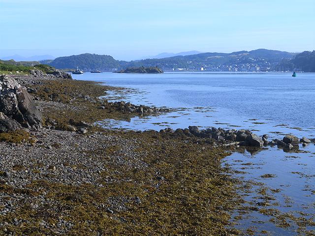 Shoreline north of the ferry slip at Kerrera