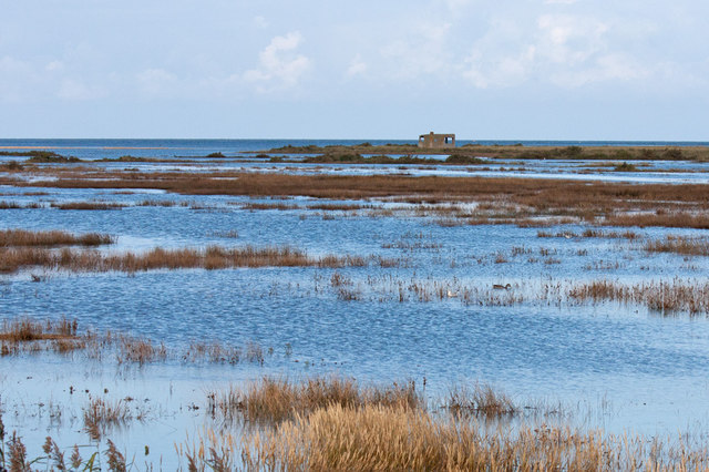 High tide on the Titchwell saltmarsh