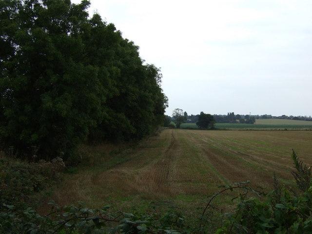 Stubble field beside the East Lancashire Road (A580)