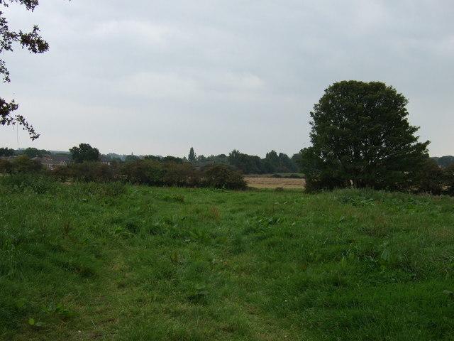 Farmland off Howards Lane