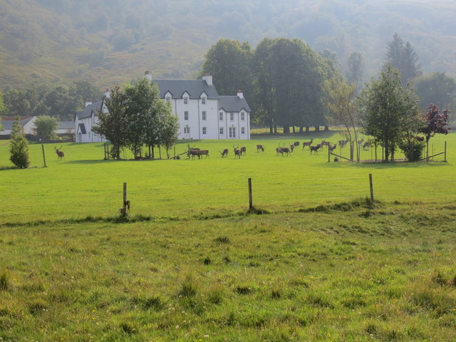 Deer in front of Laudale House Loch Sunart