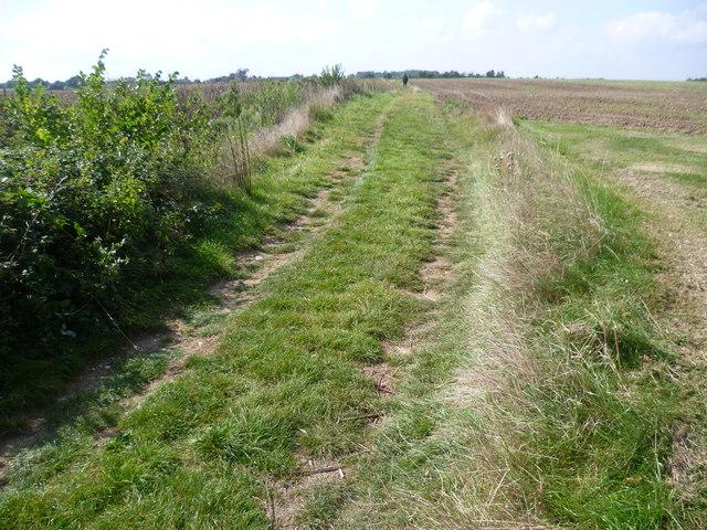 Path from Newlands Farm