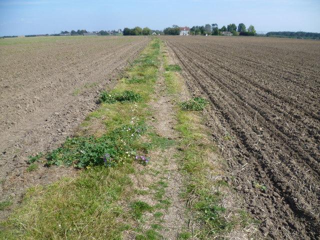 Path to Newlands Farm