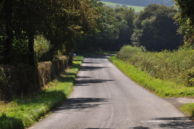 West Devon : Country Lane