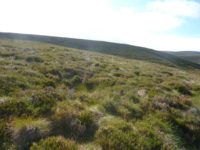 Heather moorland on the slopes of Round Hill