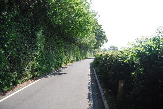 Cornford Lane