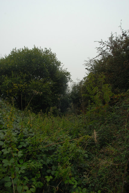 Former railway at Ryeford