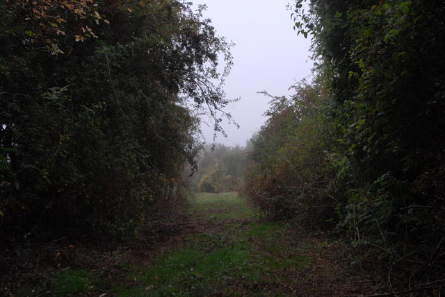 Course of old railway near Ryeford