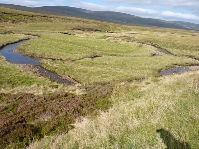 Meandering River Blackwater