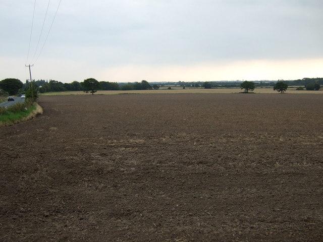 Field beside Prescot Road