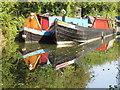 SP8813 : Narrowboats at Bates Boatyard (1) by David Hawgood