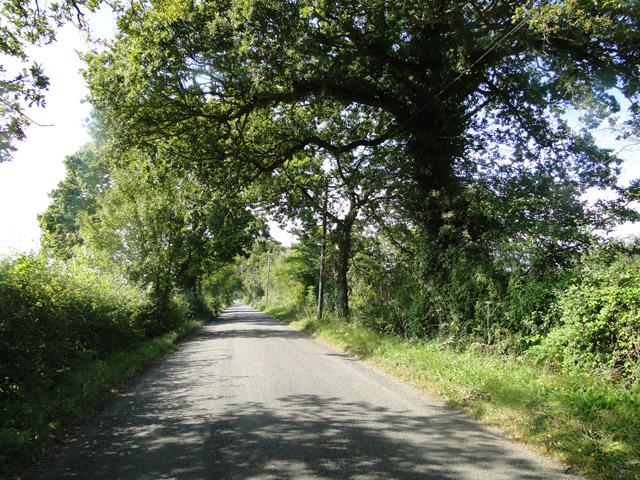 Hawthorn Road towards Clay Hills