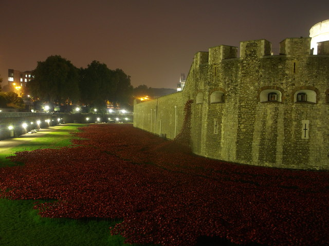 Poppies in the Moat at night. (2)