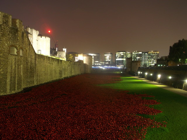 Poppies in the Moat at night. (3)
