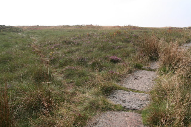 Path over Tooleyshaw Moss to Crowden