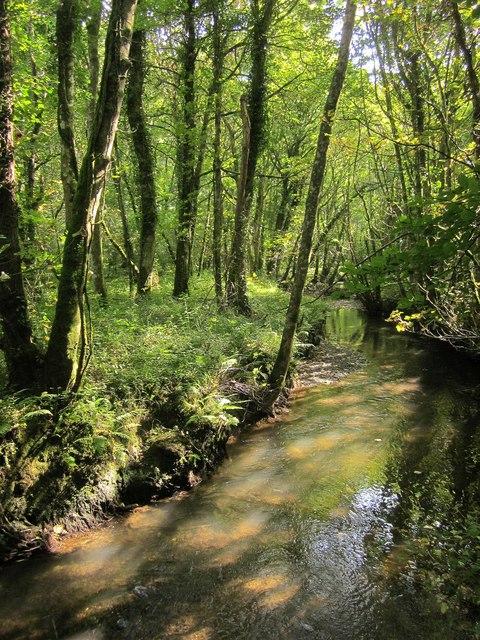 River Seaton