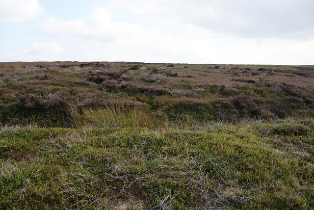 Glaisdale Moor