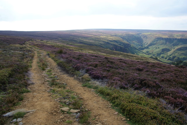 Cut Road on Glaisdale Moor