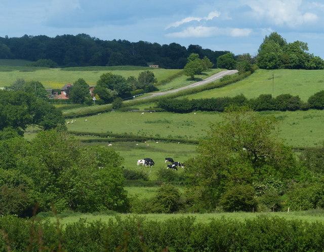 Farmland near the site of Sauvey Castle