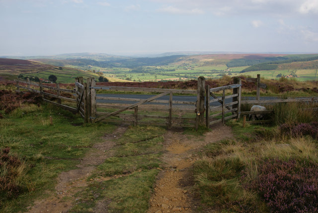 Gate on the edge of Glaisdale Moor