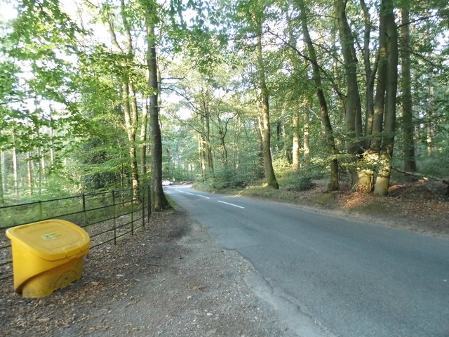 Barhatch Road going through Winterfold Wood