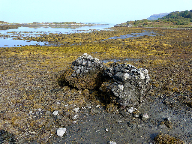 Conglomerate Boulder