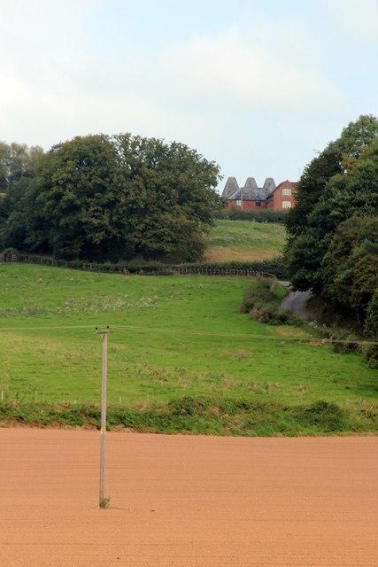 View to Oast House at Doddenhill Farm, Lindbridge