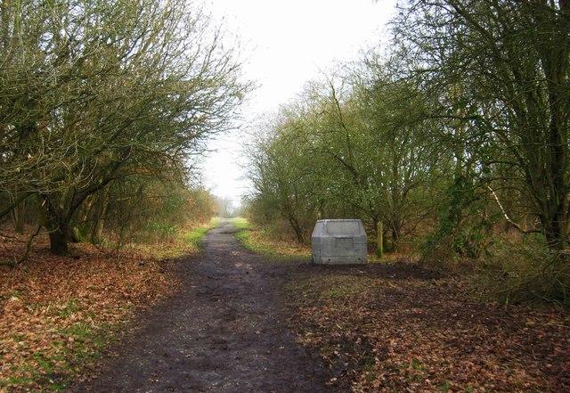 Path running north-northeast from car park at Burlish Top, near Stourport-on-Severn