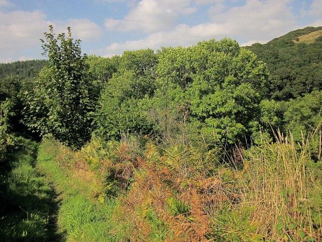 Permissive path, Seaton valley
