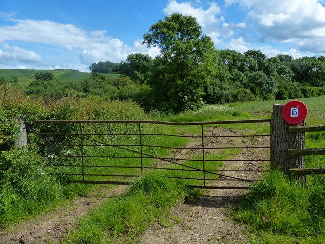 Farm gate and track at Loddington Reddish