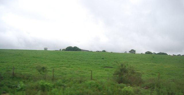Hornbeam Hills