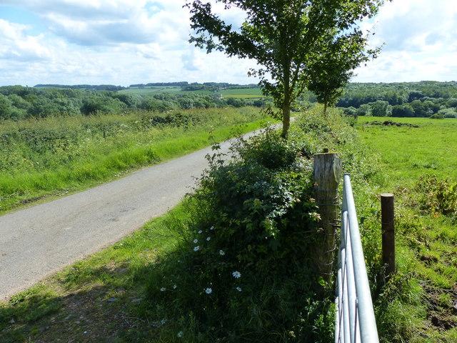 Gate along Wood Lane