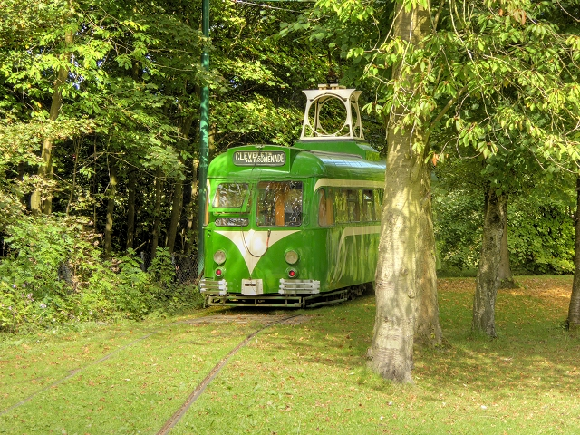 Tramcar Amongst the Trees