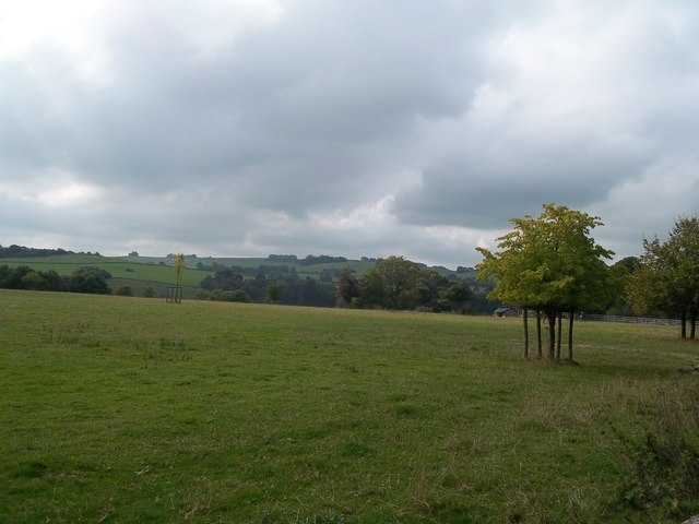 Field near Parwich Lees