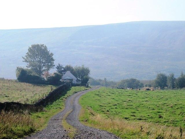 Rough pastures at Tortie