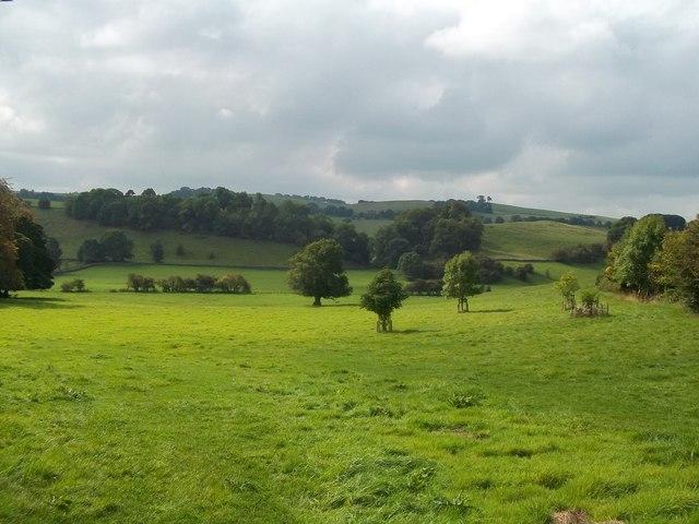 Grassland near Parwich Lees