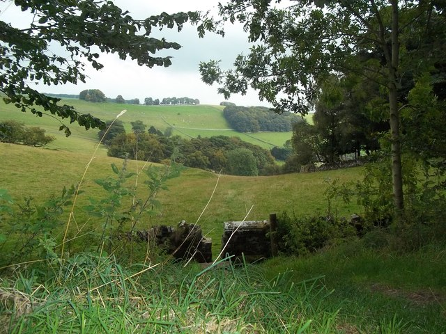 Footpath seen from the Tissington Trail