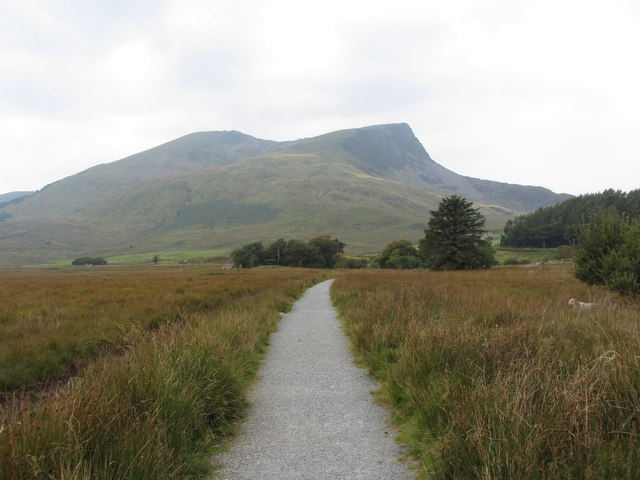 Path to Y Garn (Nantlle Ridge)