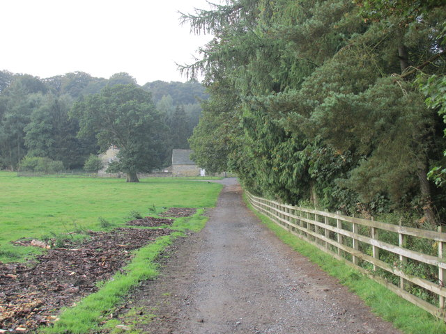 The track to Carr house.
